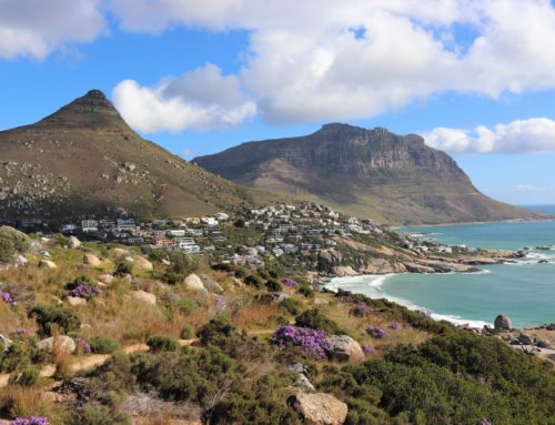 South Africa – your December holiday destination